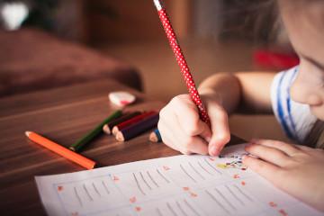 formación para personal de escuelas: imagen decorativa